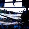 Abandoned Wheelbarrow NFT