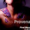 Final macs 41 of 41 CC Provenance