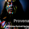 Mibstress portrait series 1 of 12 Provenance